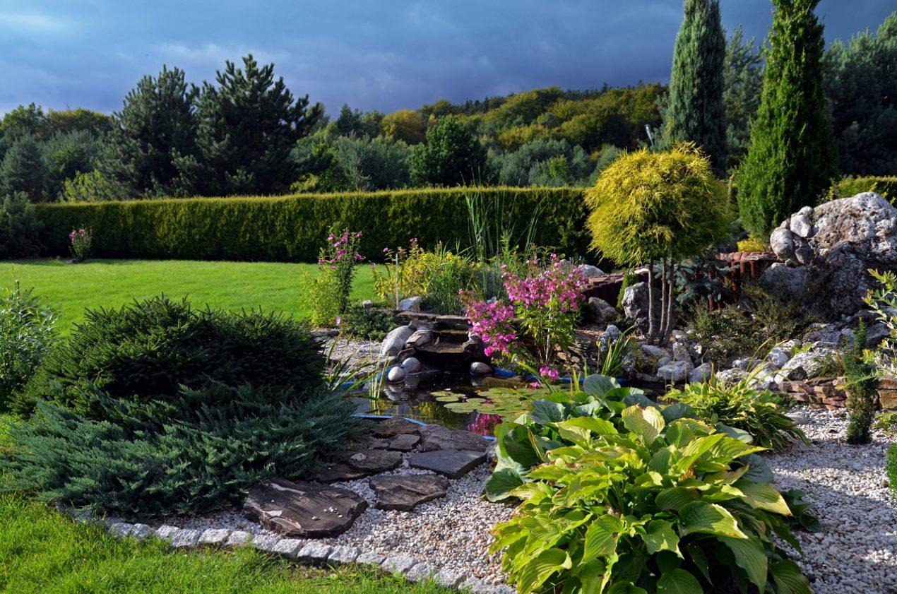 GUARDI Österreich Austria Steingarten Trockengarten Trockenpflanzen mediterran Sommer Sonne