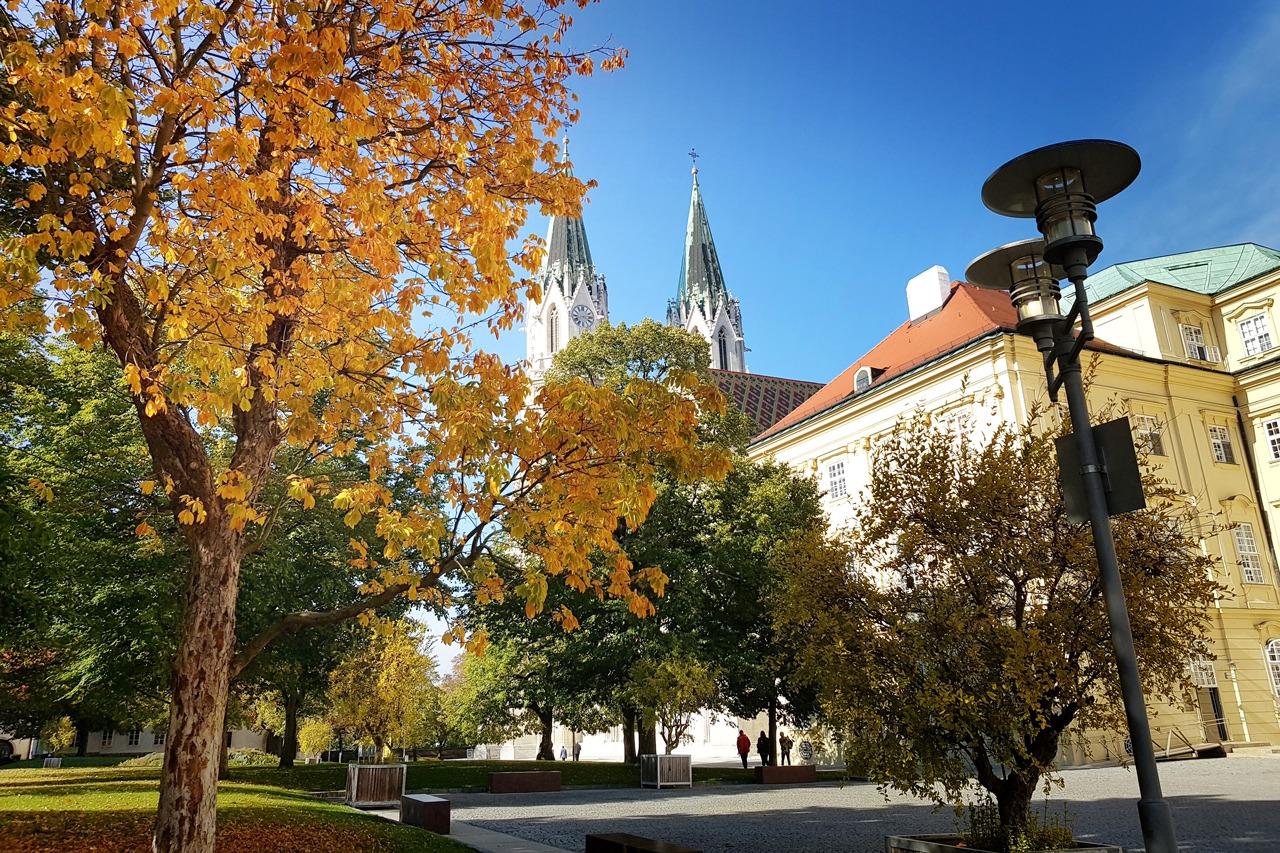 GUARDI Österreich Herbst Laub Rasen Pflege kalt bunt Blätter