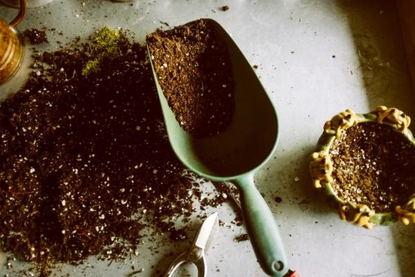 Gartenschaufel liegt auf einem Tisch gefüllt mit Erde