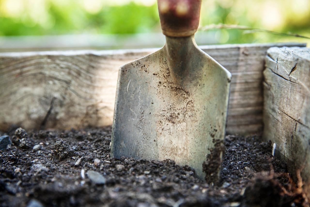 GUARDI Österreich Schaufel Garten Gartenarbeit Schippe Schaufelchen Erde Beet Hochbeet