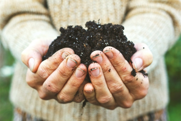 GUARDI Richtig Kompostieren Kompost anlegen schichten
