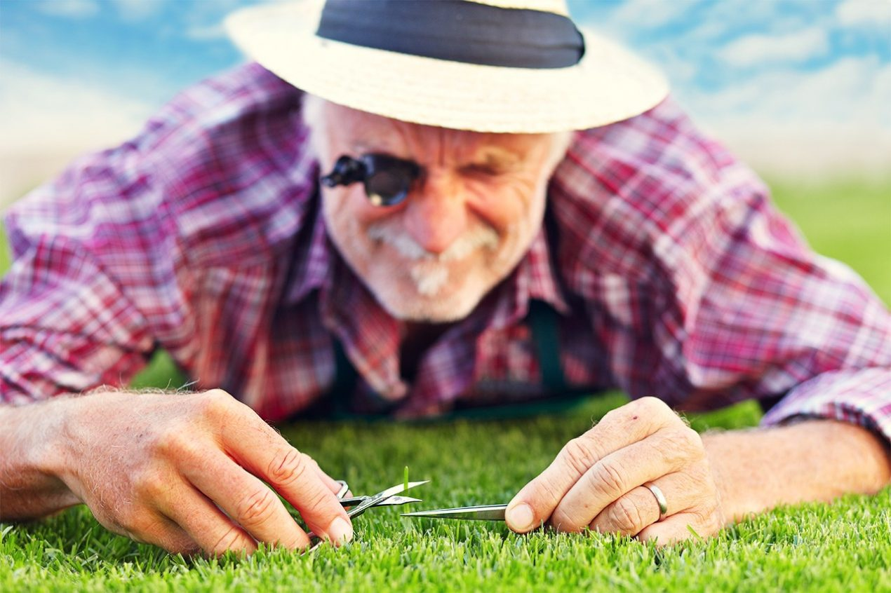 GUARDI Rasenpflege Frühling Garten