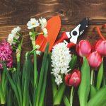 GUARDI April Frühling Tulpen Werkzeug