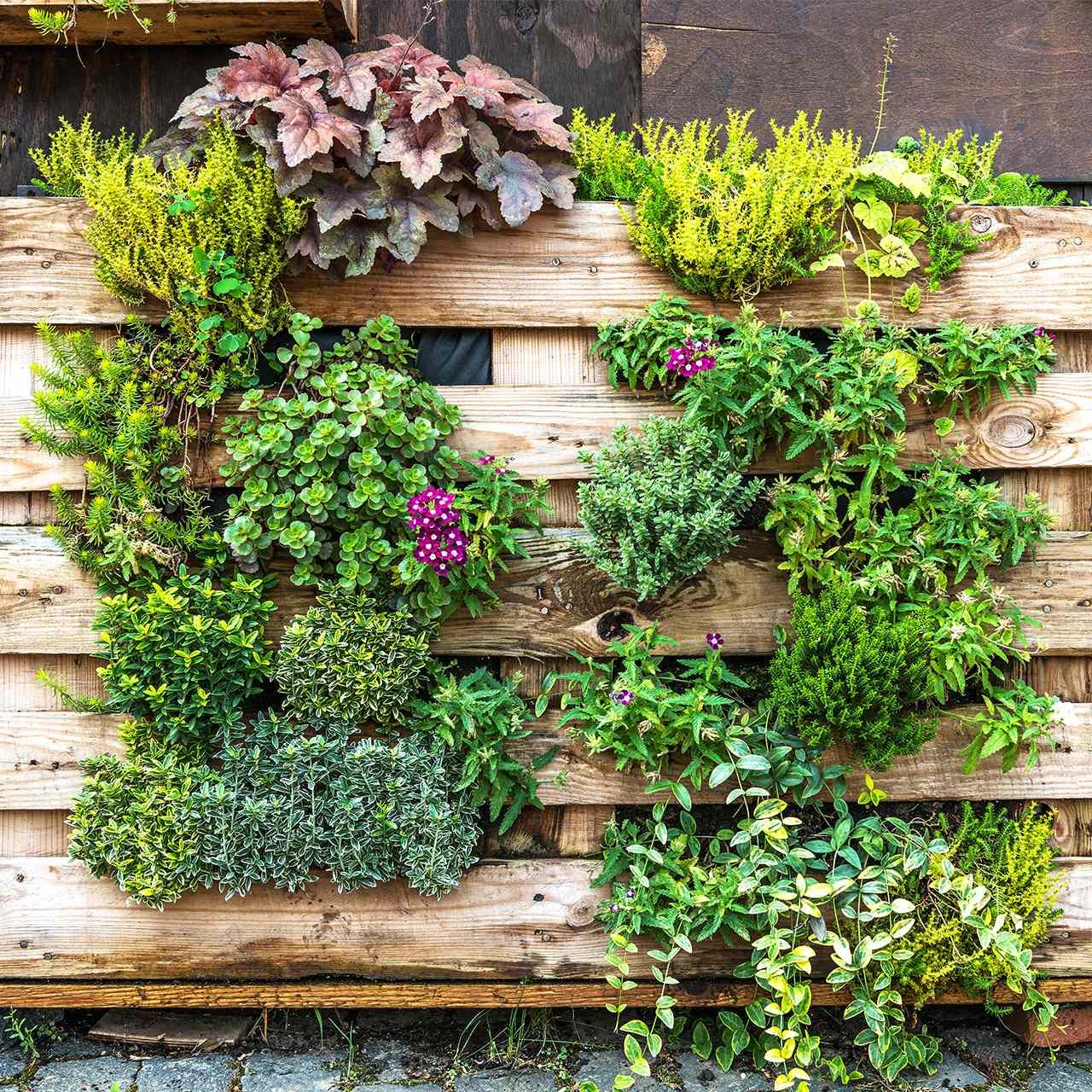 Sichtschutz Für Garten Terrasse Die 8 Schönsten Ideen Varianten