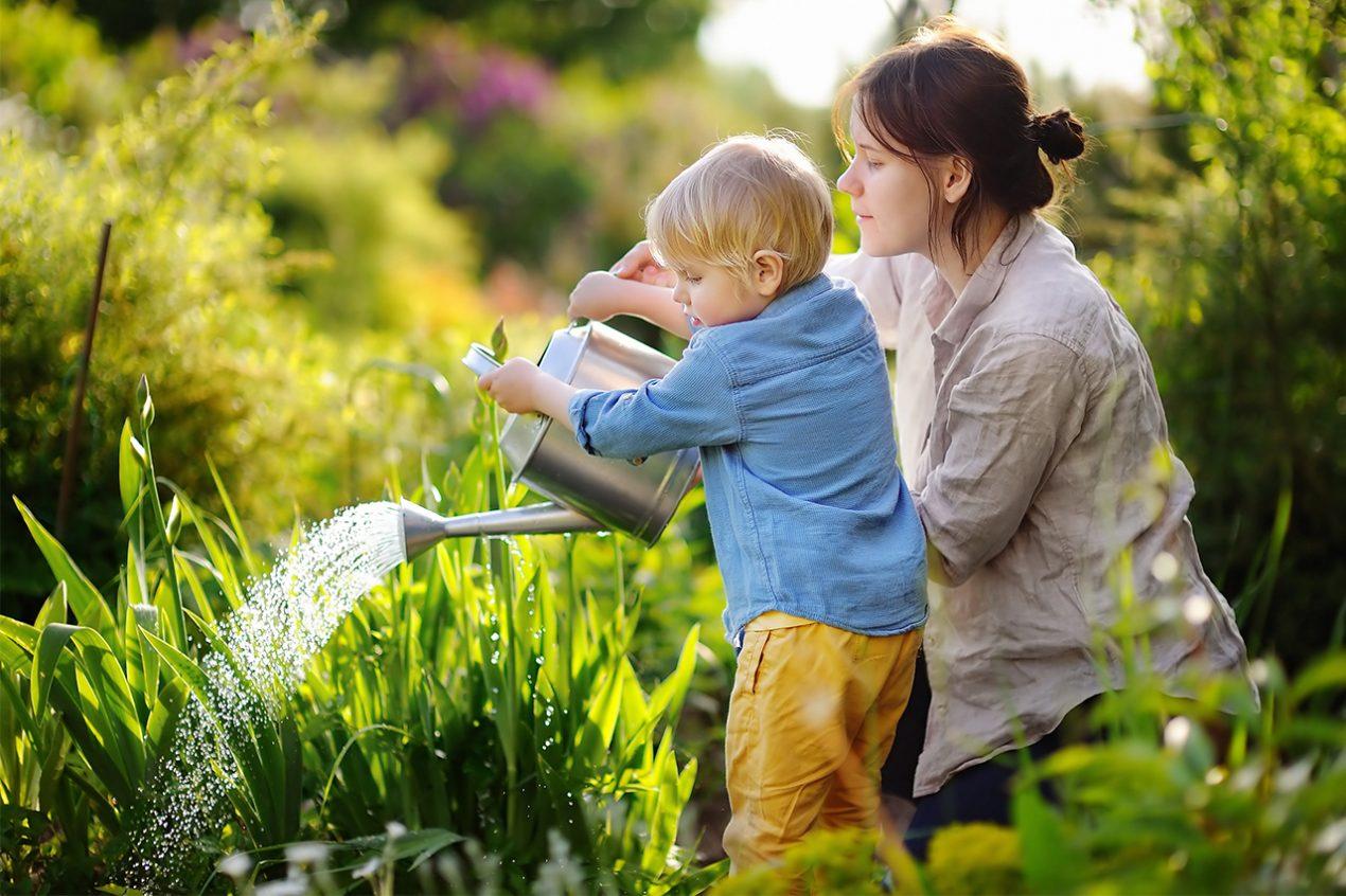 GUARDI Österreich Gartenmonat Juli Rasen Pflanzen pflege Sommer