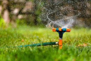 GUARDI Österreich Gartenmonat Juli Rasen bewässern Bewässerung gießen Wasser sprengen