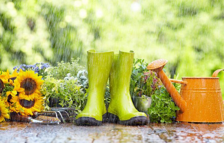 Man erkennt Gartenutensilien, die im Regen stehen.