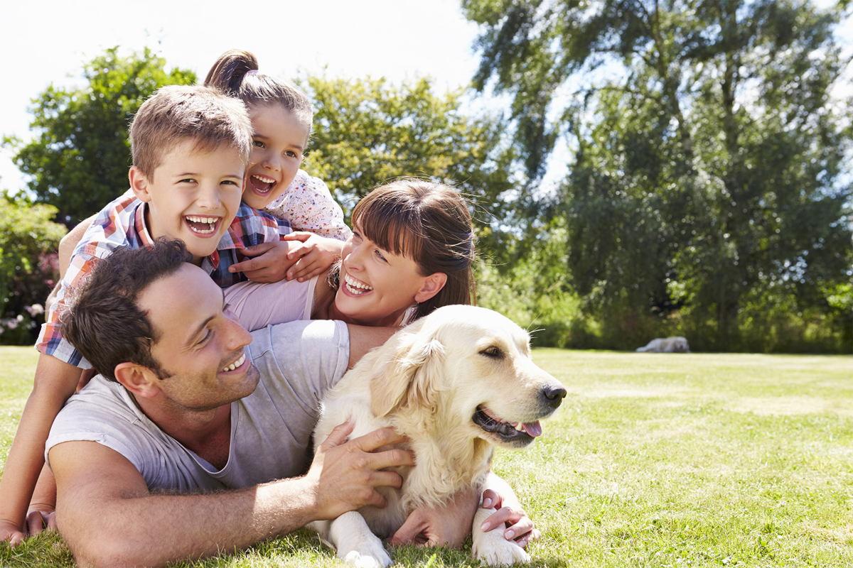 Zu sehen ist eine Familie mit zwei Kindern und einem Hund, die auf einer Wiese liegen und lachen