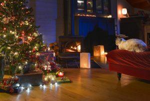 Guardi_Österreich_Katze_Weihnachtsbaum