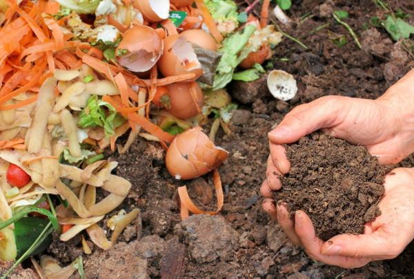 organischer Dünger, Kompost, Gartenpflege, Gartenzaun