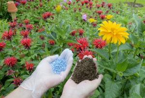 organischer Dünger, gartentor grün, pflanzenerde