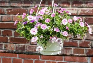 Blumenampel, platzsparend, Deko, Balkontrend, Balkon