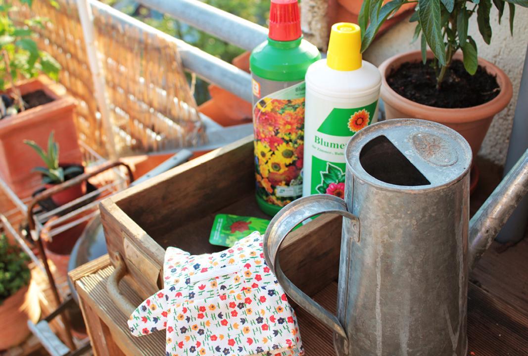 Umtopfen Pflanzen Balkon Garten, Frühling, Gartenarbeit, Pflege