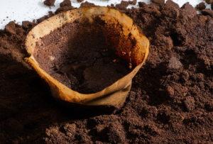 kaffeesatz, kompost, filtertüten