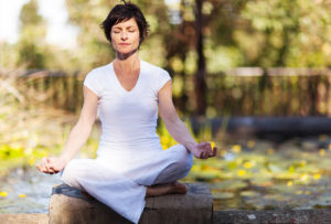 meditation, zaun, garten, baum, guardi, günstig