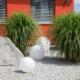 Vorgarten gestaltet mit Kies und Pflanzen