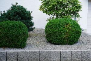 Den Vorgarten modern gestalten – Ohne Kies ist´s mies