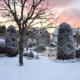 Garten im Winter mit einer Schneedecke