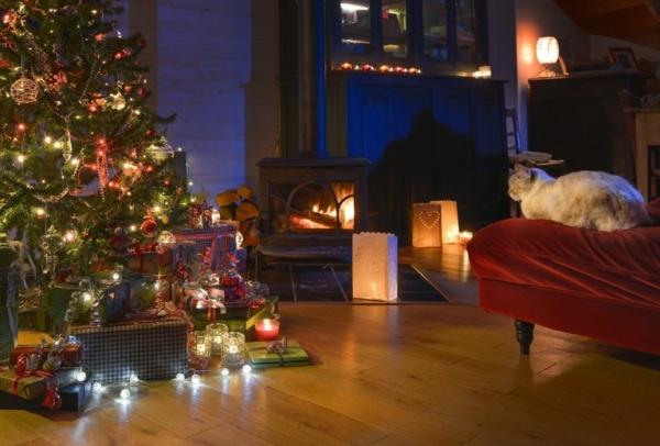 Wohnzimmer mit einem geschmückten Weihnachtsbaum und einer Katze, die auf einem Sofa sitzt