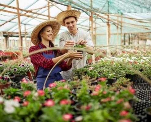 Eine junge Dame und ein junger Herr sind gerade dabei, ihre Pflanzen zu gießen.