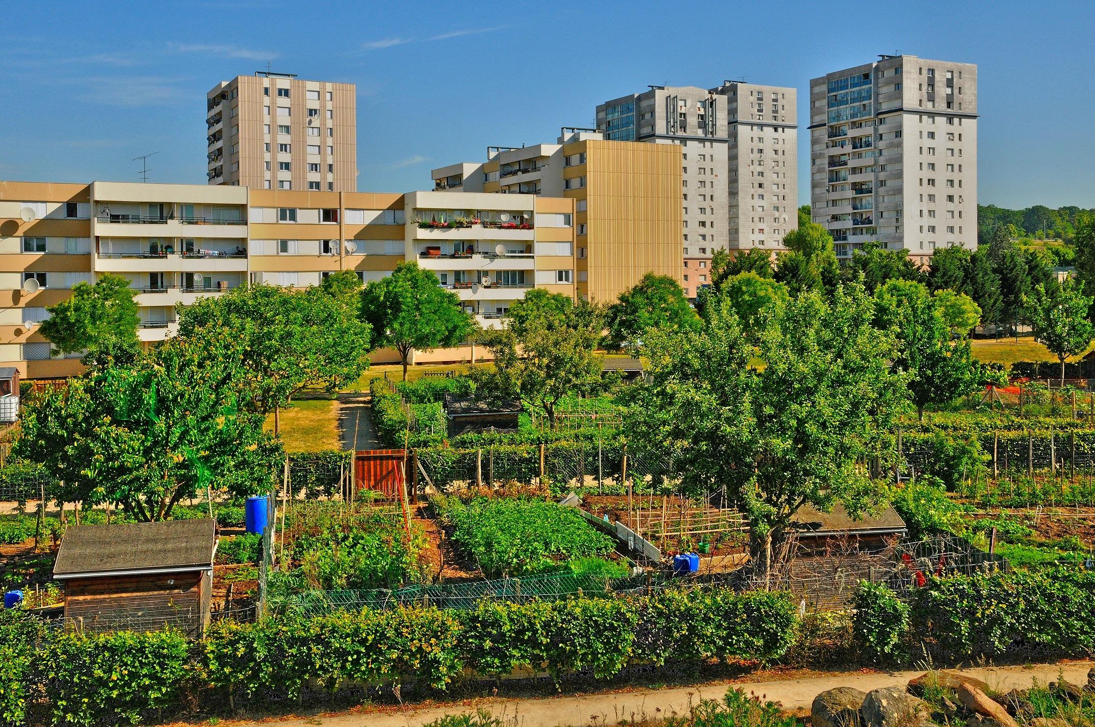 Im Vordergrund ist ein Schrebergarten zu sehen, im Hintergrund Hochhäuser einer Stadt