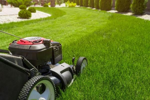 Auf dem Bild ist ein Rasenmäher zu sehen, der gerade über einen grünen Rasen mäh
