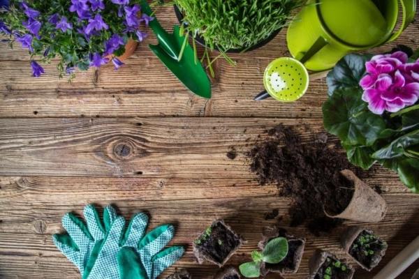 Man erkennt mehrere Gartenutensilien