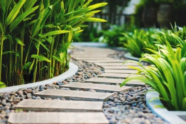 Man erkennt einen von Pflanzen umgebenen Weg