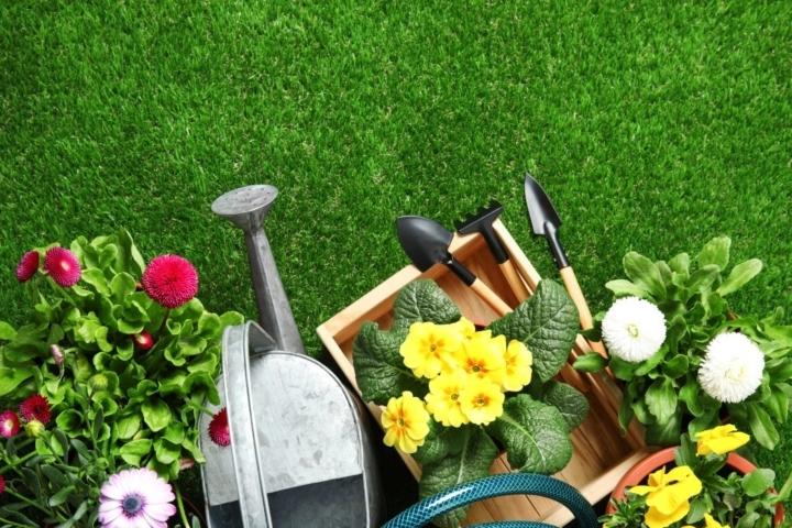 Man erkennt verschiedene Gartenwerkzeuge auf grünem Rasen