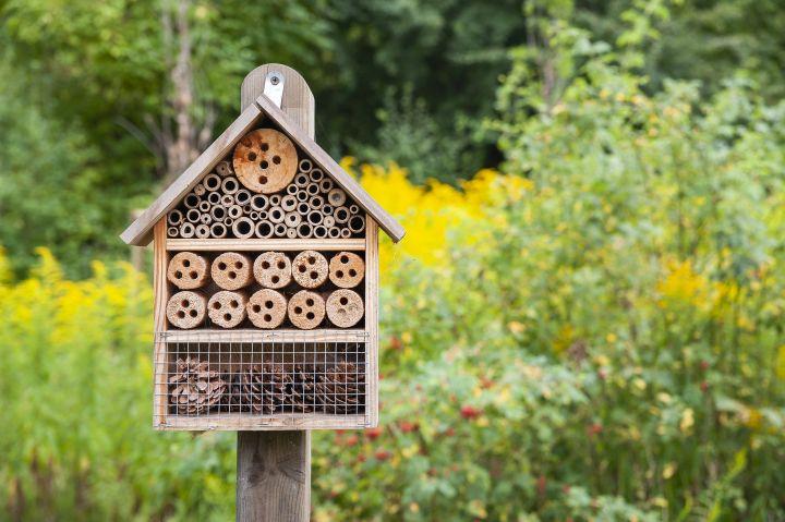 Man erkennt ein Insektenhaus