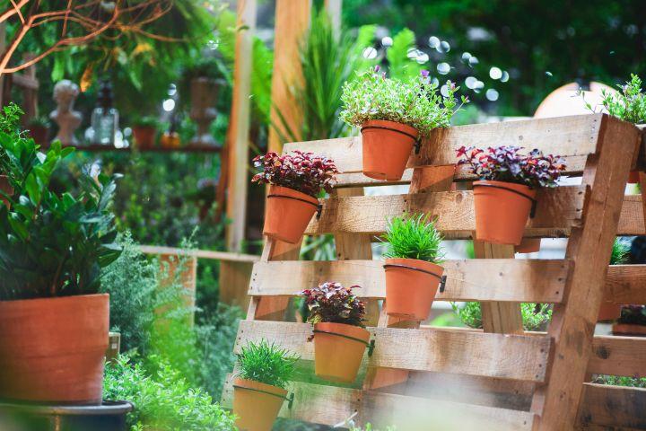 Europaletten als Sichtschutz für den Garten, auf den Paletten sind Blumentöpfe befestigt