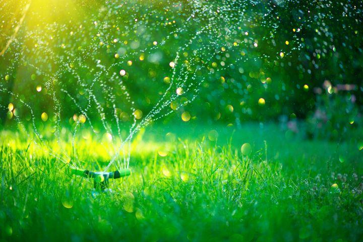 Man erkennt eine Garten Bewässerung