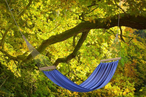 Blaue Hängematte hängt am Baum .