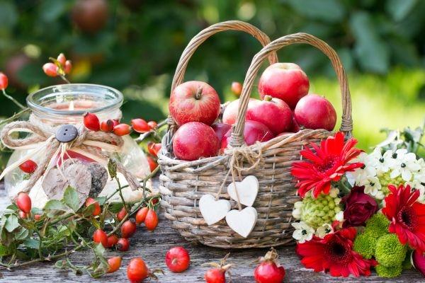 Man sieht eine Herbstdekoration mit Äpfel im Weidenkorb,Herbstblumen und Hagebutten als Kartenmotiv