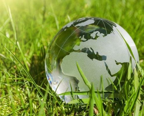 Zu sehen ist eine Weltkugel aus Glas, welche im grünen Gras liegt.
