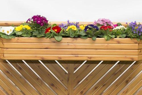Blumenkiste in Holzoptik, darin sind blühende Blumen zu sehen